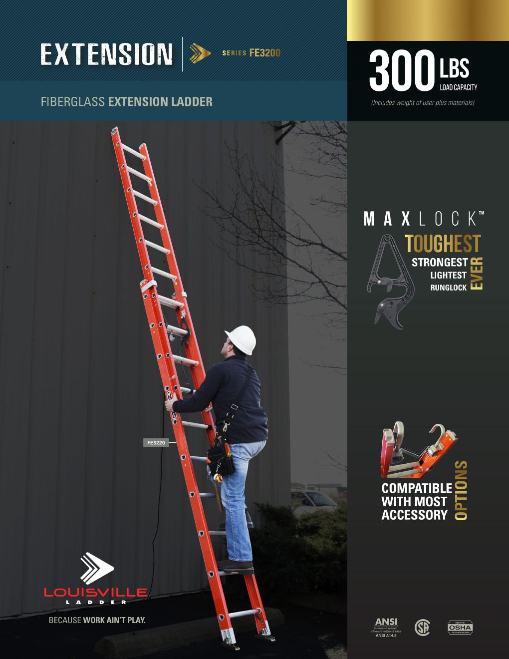 FE3200 Extension Ladder Flyer and Spec Sheet Marketing Material Image