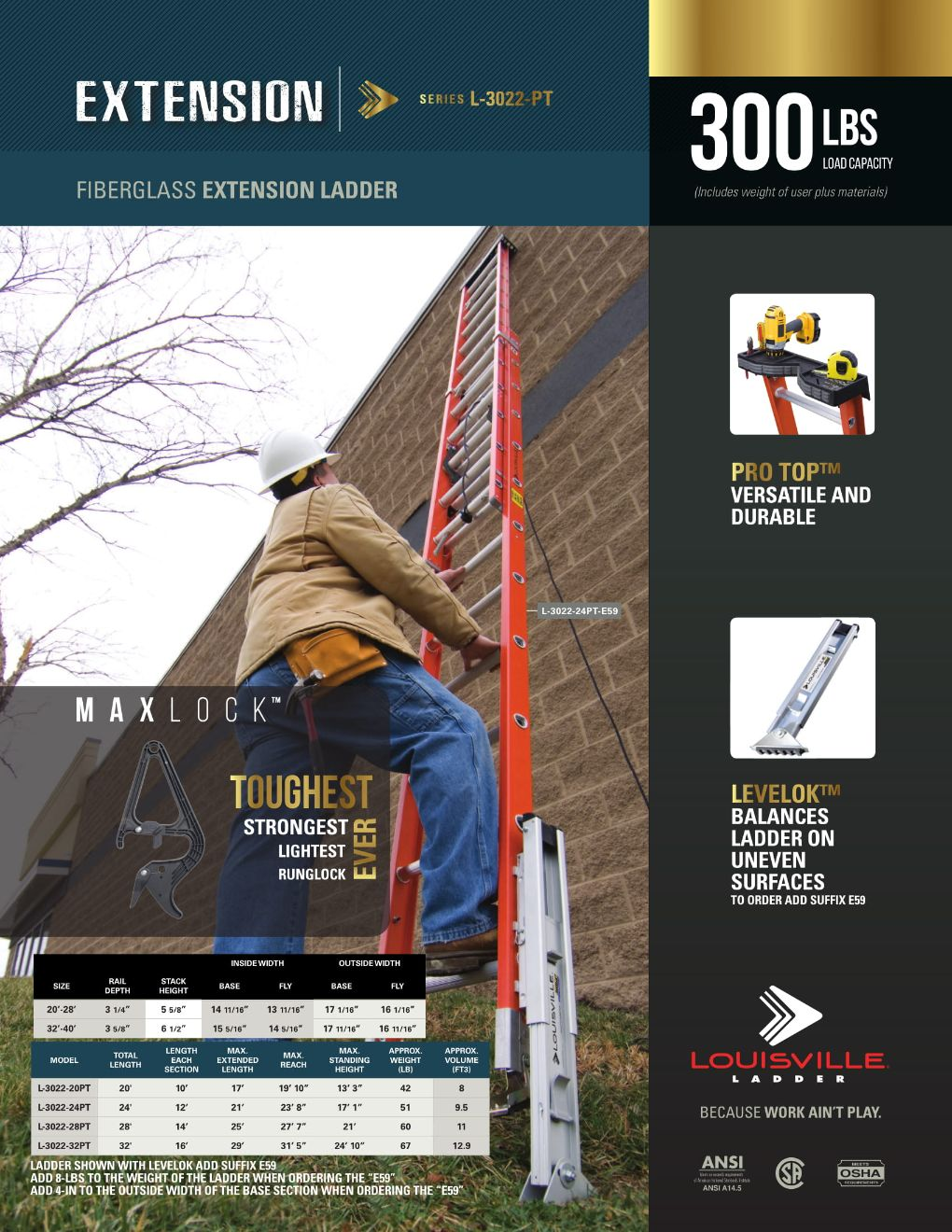 L-3022-PT-E59 Extension Ladder and Spec Sheet Marketing Material Image
